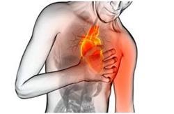 Болезни сердца на нервной почве список